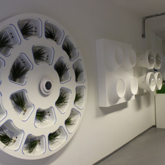 Green9 Biotech Product Design R Amp D